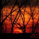 Sunset, Oil Creek State Park,